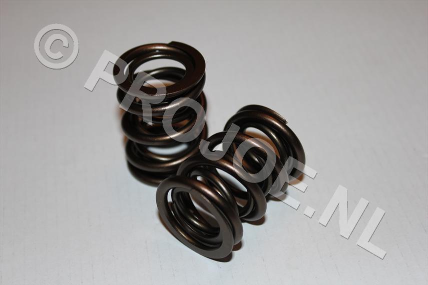 race valve springs
